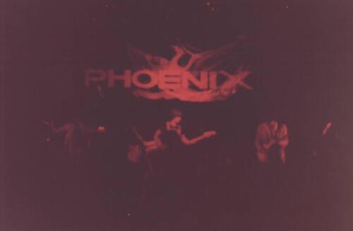 Phoenix D1